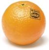 Sinaasappel_klein_1